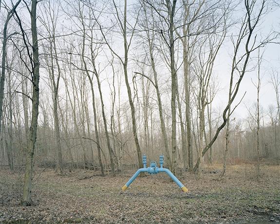 © Dan Mariner3