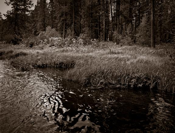 © Ken Hochfeld3